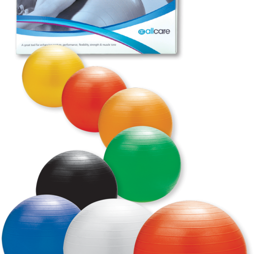 Evans Head Physiotherapy - Exercise Balls